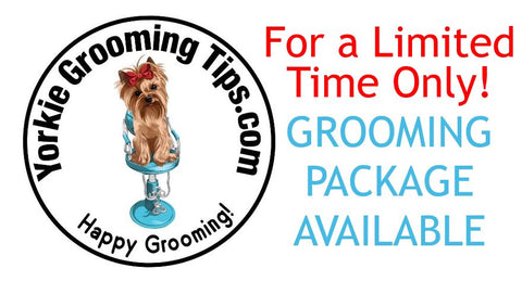 Image of Yorkie Grooming Tips Package