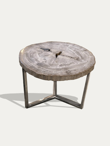 table en  bois petrifie