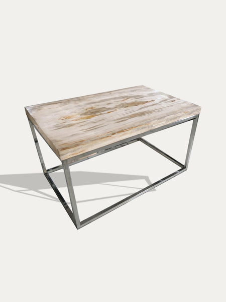 petrified wood side table - bois petrifie