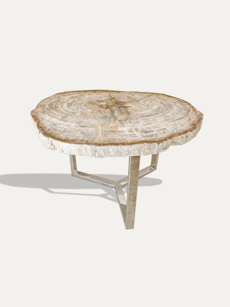 Petrified Wood Coffee Table - kirschon