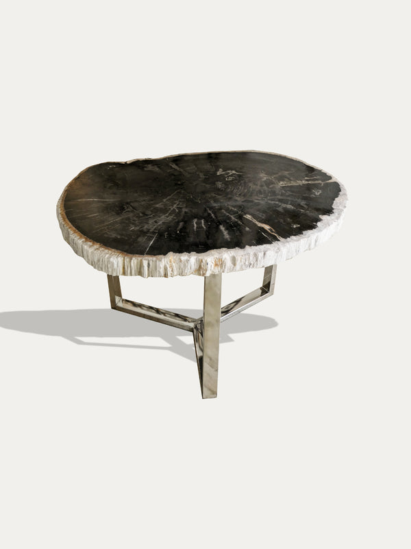 Petrified Wood Coffee Table