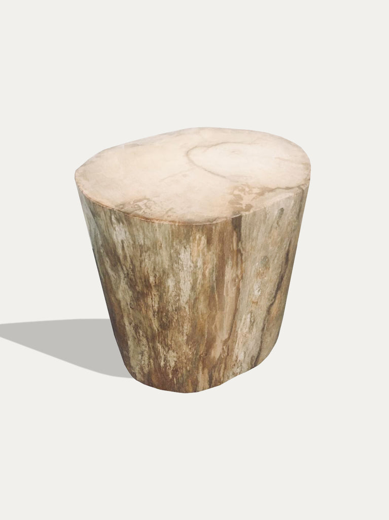 Kirschon Petrified Wood Stool / Side Table