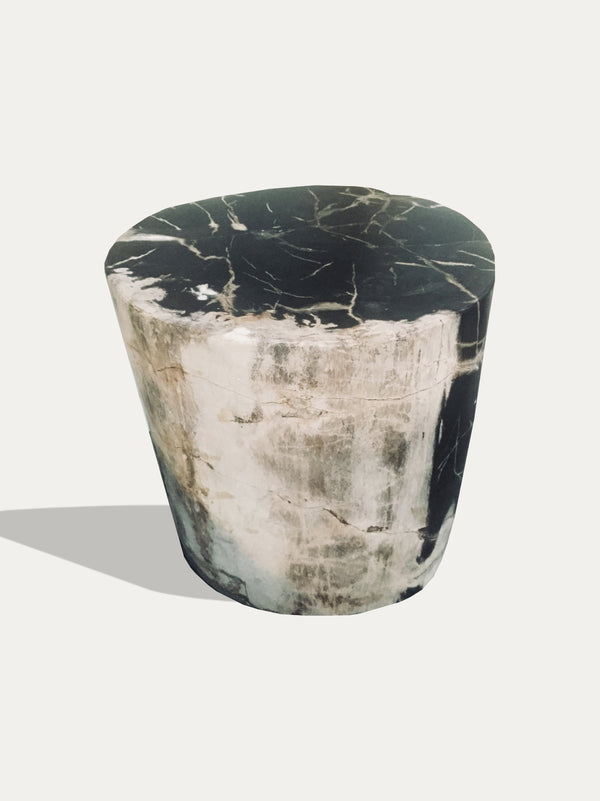 Petrified Wood Side Table / Stools - kirschon