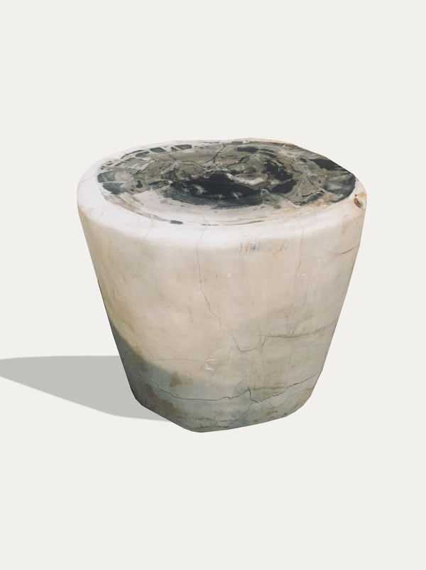Petrified Wood Side Table / Stool - kirschon