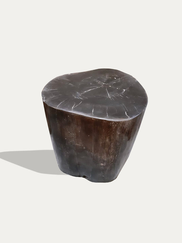 Kirschon Petrified Wood Stool / Side Table Legno fossile