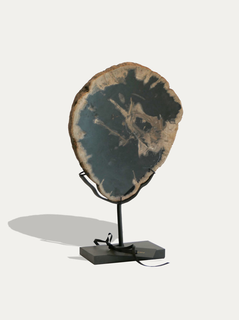 Petrified Wood Sculpture and Tray - kirschon