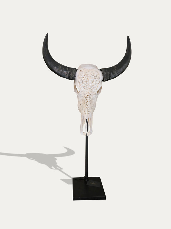 Hand Carved Buffalo Scull From Bali - kirschon