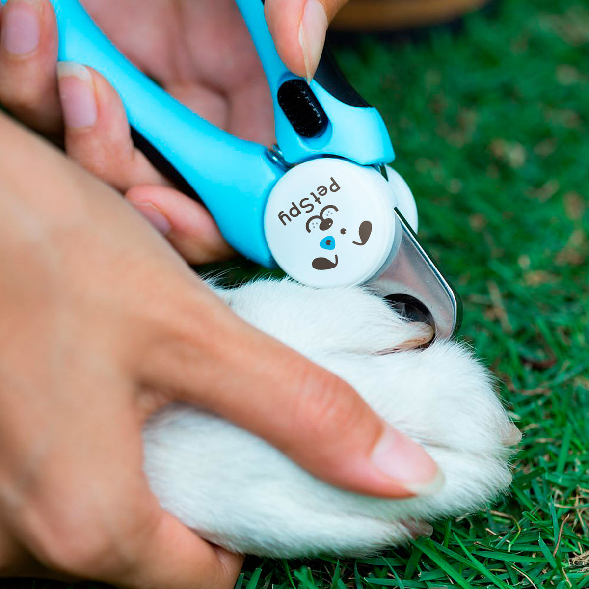 Dog Nail Clippers and Trimmer with Quick Sensor