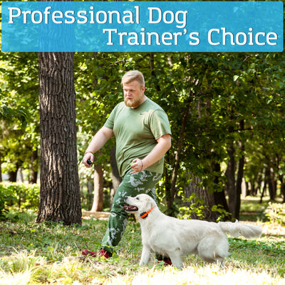 PetSpy M686 dog training collar perfect choice for professional trainers