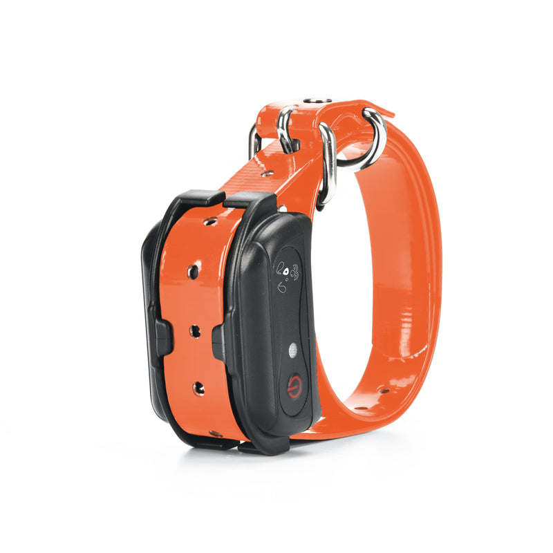 M919 Extra Dog Training Collar