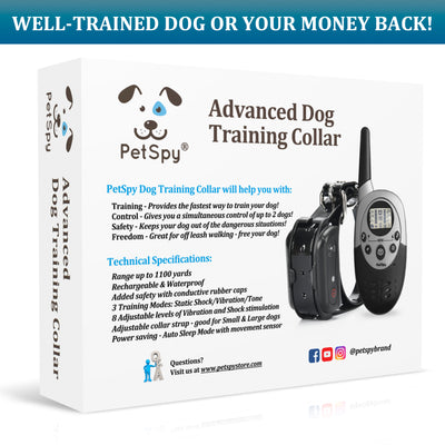 Well trained dog or your money back