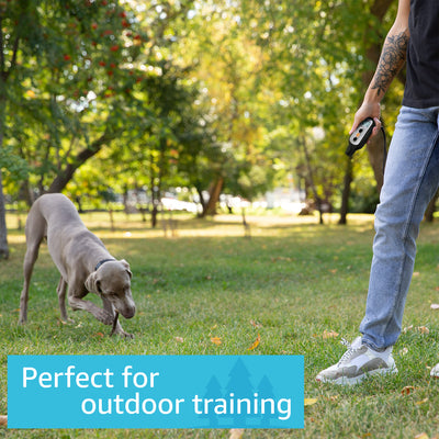 Outdoor dog training with PetSpy Xpro X-Pro Dog shock collar