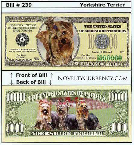 Yorkshire Terrier Novelty Currency Bill