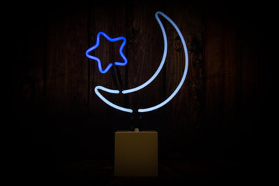 Moon and Star Neon Sign