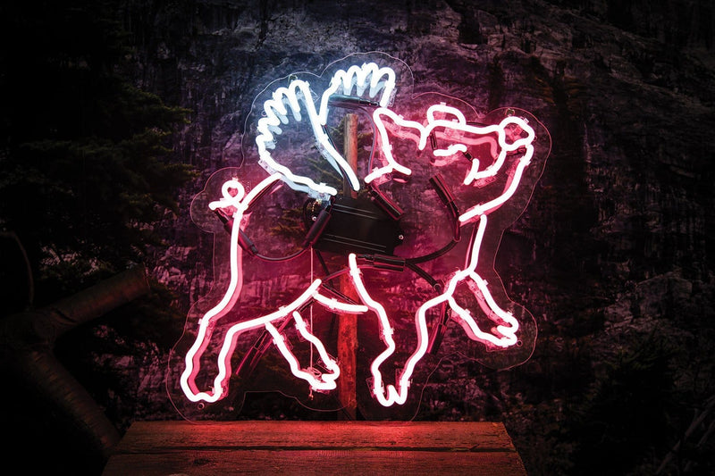 Flying Pig Neon Sign Wall Mounted