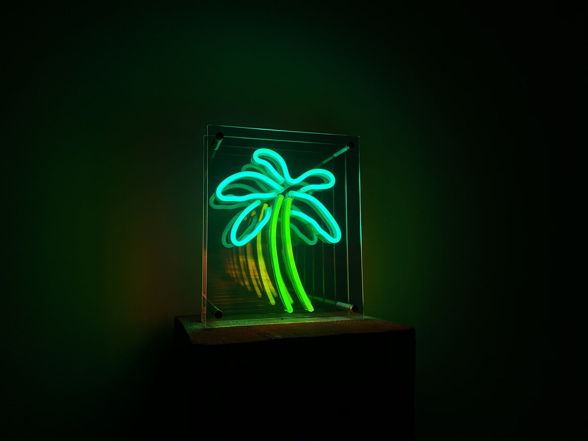 Palm Tree infinity mirror LED Neon Sign