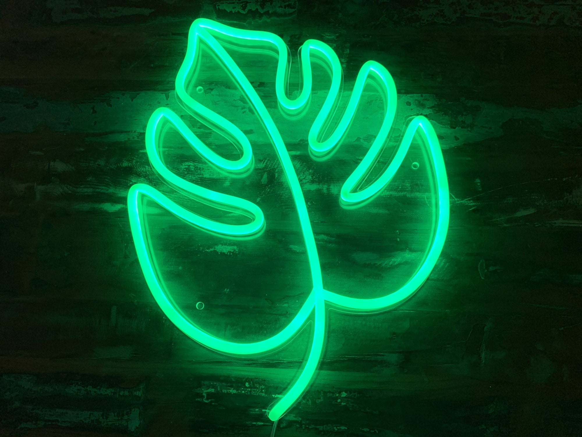 Tropical Leaf LED Neon Sign