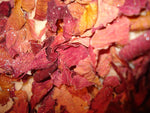 Anoush botanicals and organics Organic Rose Petals for infusion