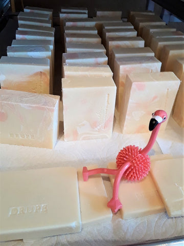 Anoush botanicals and organics Fun & Fabulous Soap Drupe bars curing
