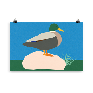 Poster Art Print Illustration – Duck Pola