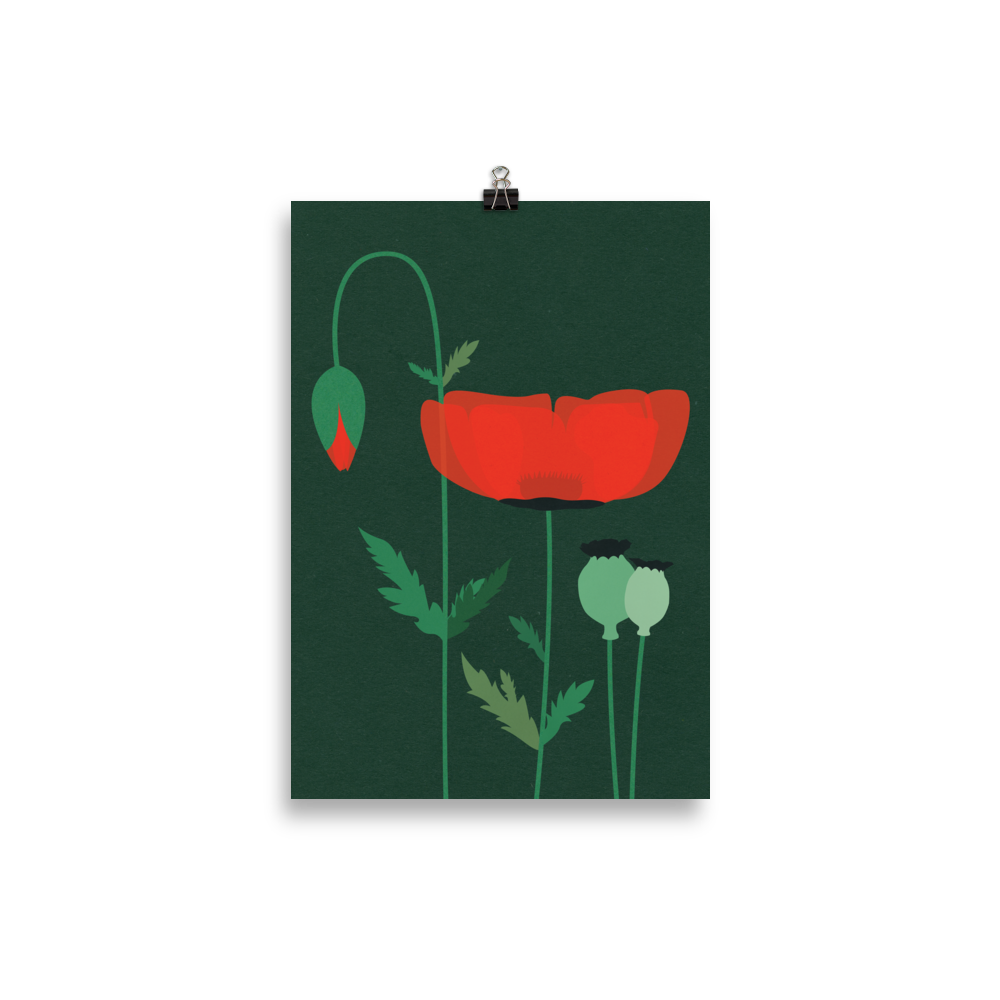 Poster Art Print Illustration – Red Poppy