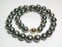 9.8-11.9mm Tahitian pearl & 9ct gold necklace
