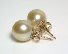 Load image into Gallery viewer, 9.6mm gold South Sea pearl & 9 carat gold earrings
