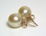 9.6mm gold South Sea pearl & 9 carat gold earrings
