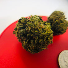 Load image into Gallery viewer, Magnified view of industrial hemp bud on red background comparing size of bud against a US silver quarter.
