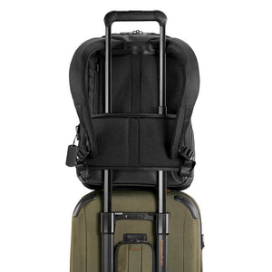 Briggs & Riley Delve Medium Backpack in Black slip-through panel