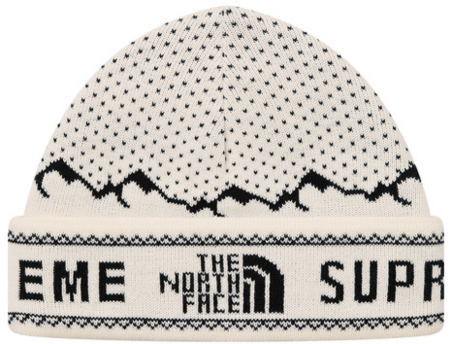 f485cd3f660 SUPREME THE NORTH FACE FOLD BEANIE