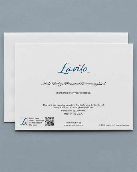 Lavilo™ Greeting Cards - Reverse side with the title MALE RUBY-THROATED HUMMINGBIRD