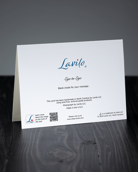 Lavilo™ Greeting Cards - Reverse Side with the Title EYE TO EYE
