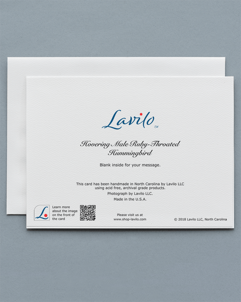 Lavilo™ Greeting Cards - Reverse side with the title HOVERING MALE RUBY-THROATED HUMMINGBIRD