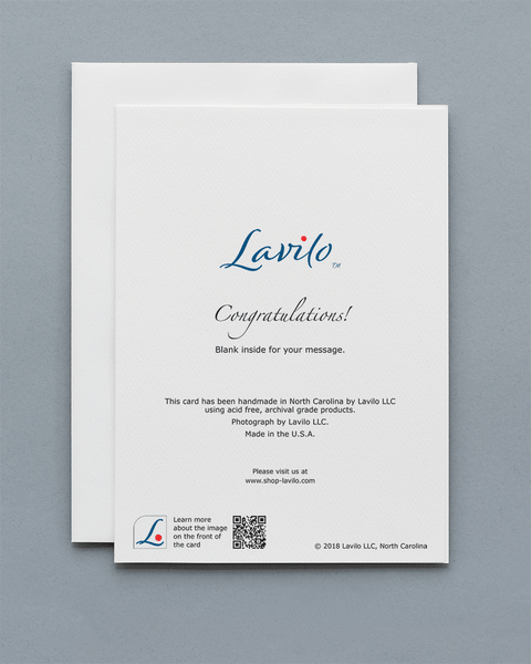 Lavilo™ Greeting Cards - Reverse Side with the Title CONGRATULATIONS!