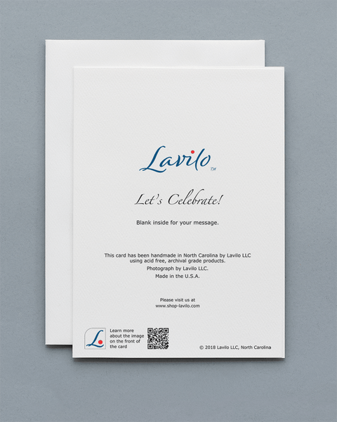 Lavilo™ Greeting Cards - Fireworks - Let's Celebrate