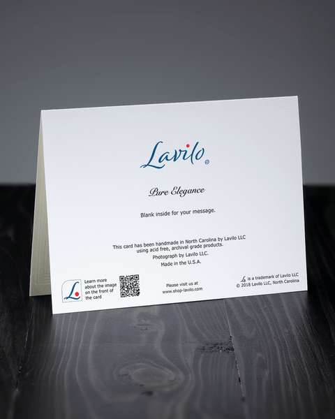 Lavilo™ Greeting Cards - Reverse Side with the Title PURE ELEGANCE
