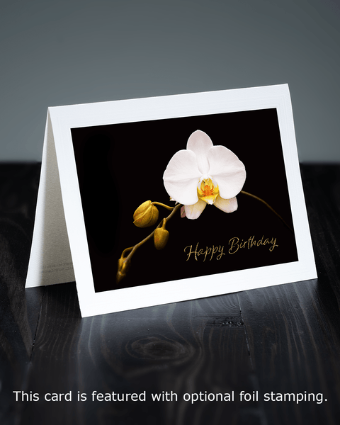 Lavilo™ Greeting Cards - Front Side - White Orchid