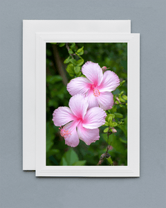 Lavilo™ Greeting Cards - Front Side Hibiscus Flower
