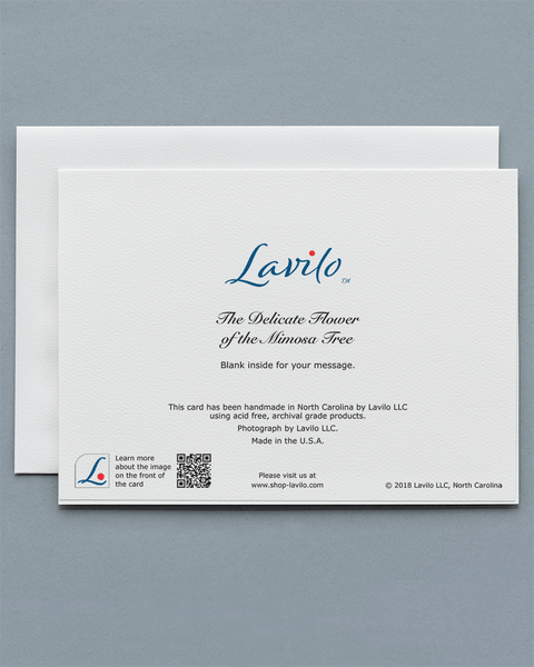 Lavilo™ Greeting Cards - Reverse Side with the Title THE DELICATE FLOWER OF THE MIMOSA TREE