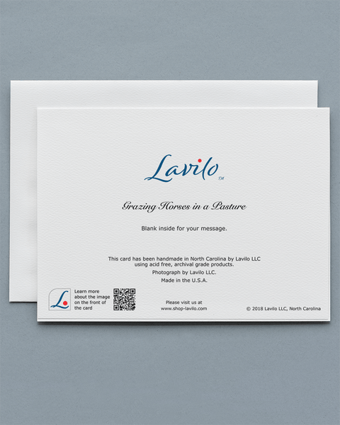 Lavilo™ Greeting Cards - Reverse Side with the Title GRAZING HORSES IN A PASTURE