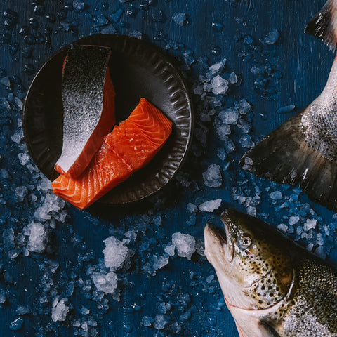 Tips for choosing fresh sustainable fish and seafood - Foley Fish