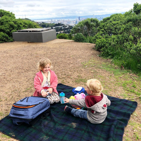 Packing a family picnic with the Knack Pack