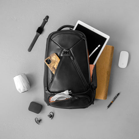 Best backpack for professional business travelers