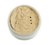 Translucent Finishing Powder 3
