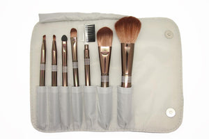 Shiny Silver Brush Case