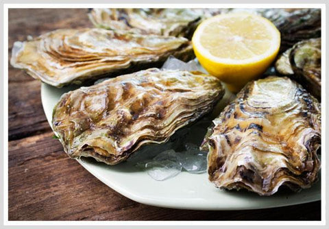 Oysters are not a aphrodisiac