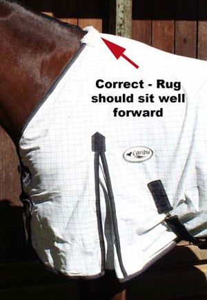 Avoiding Horse Rug Rub Marks - The Rug above shows the correct fit, nice and high up the neckline and over the wither.