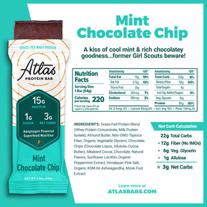 Mint Chocolate Chip (10-ct)