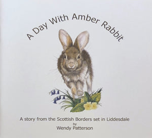 A Day with Amber Rabbit - A story from the Scottish Borders by Wendy Patterson